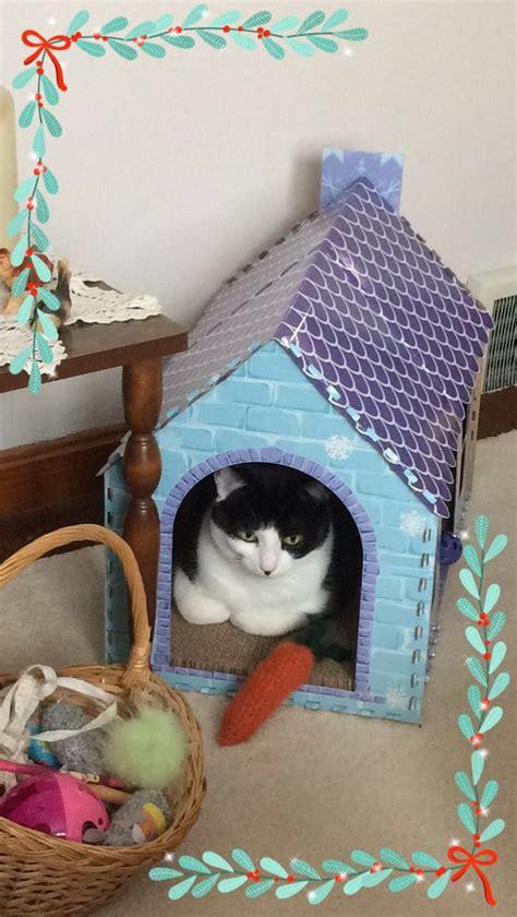 cat nosy names tuxedo named cats