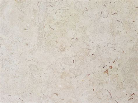 Shell Tile Imports by Shellstone Imports Inc Miami Gardens Florida Proview