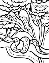 Inchworm Drawing Coloring Clipartmag sketch template