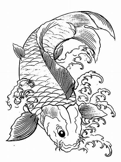 Koi Coloring Fish Japanese Fun Dragon Kleurplaat