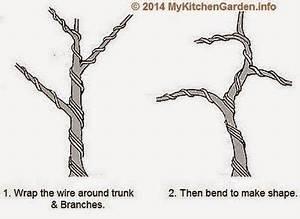 best 25 bougainvillea bonsai ideas on pinterest bonsai With wiring yew bonsai