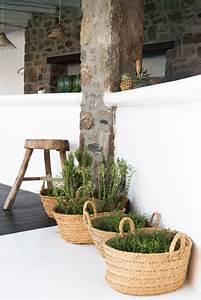 Panier Osier Plante : diy et si vous plantiez votre plante dans un panier jardiner en ville ~ Teatrodelosmanantiales.com Idées de Décoration