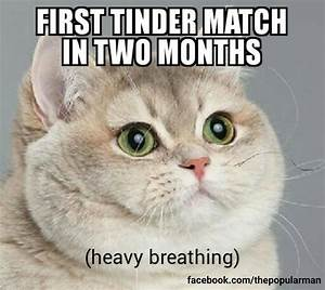 25 Relationship Memes Life Quotes Humor