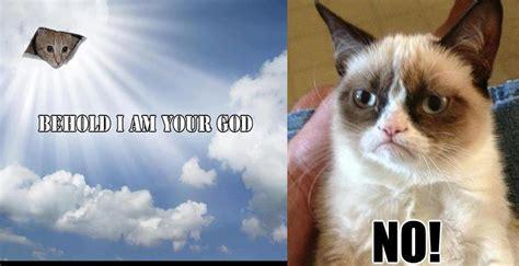 No Cat Meme 18 Extremely Grumpy Cat No Memes Sayingimages