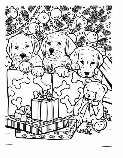 Coloring Christmas Sheets Older Adults