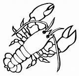 Lobster Coloring Crustaceans Crayfish Children Marine Looking Getdrawings Again Bar Case Don sketch template
