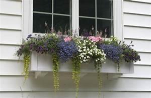 Kunstblumen Für Balkon : blumen kombinationen blumenkasten h ngepflanzen ~ A.2002-acura-tl-radio.info Haus und Dekorationen