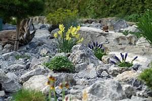 Steingarten Mit Gebirgspflanzen. steingarten selbst anlegen so ...