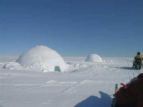 Arctic Background Arctic Wallpaper Hd