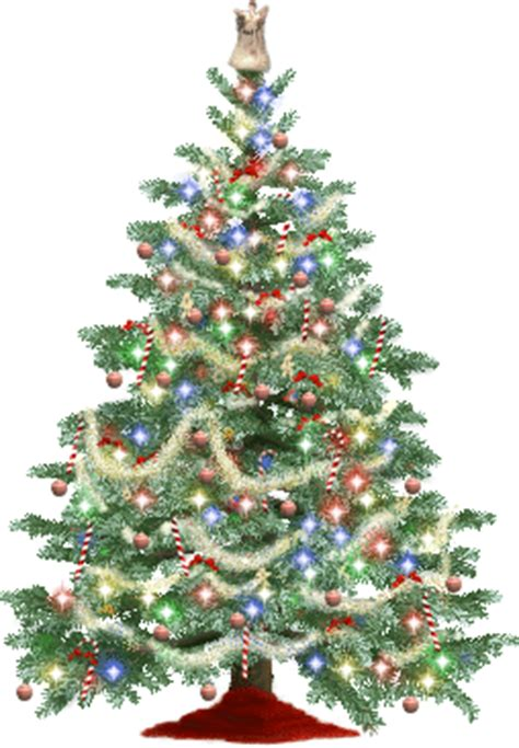 india 2012 download free christmas tree clipart