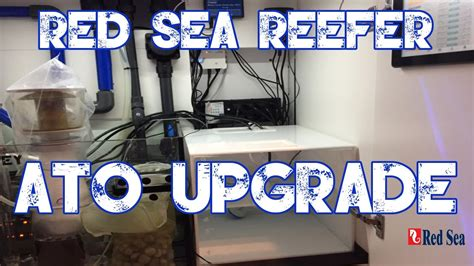 Red Sea Reefer 250   Custom ATO Container   Blue Tide