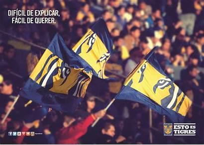Tigres Banderas Uanl Mx