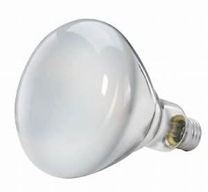 Philips soft white watt br indoor flood light