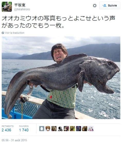 cuisiner traduction anglais non ce monstrueux poisson n est pas un mutant de
