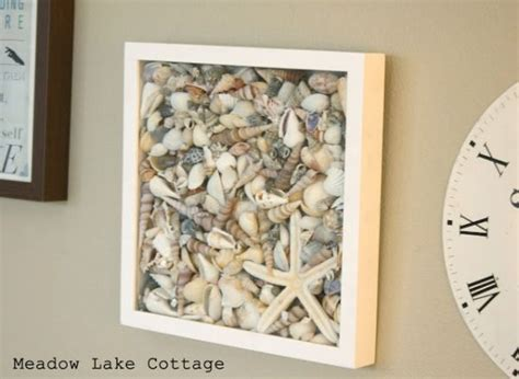 how to display shells ideas 25 best ideas about shell display on pinterest display sea shells coastal diy wedding decor