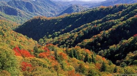 Appalachian Mountains Fall Iphone Wallpaper by Great Smoky Mountains Wallpapers 173318 Desktop Background