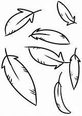 Feathers Coloring sketch template