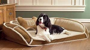 dog beds for large dogs comfortable jen joes design dog With comfortable dog beds large dogs