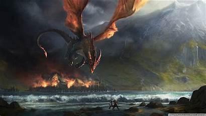 Dragon Wallpapers Dragons Backgrounds 1080p Funny Smaug