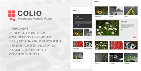 colio responsive portfolio wordpress plugin  flgravity