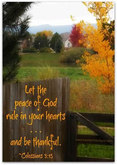 Bible Thankful God Peace Let Rule Verses