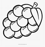 Grapes Coloring Clipart Colorear Uvas Dibujo Grape Uva Dibujos Drawing Vineyard Colorare Disegno Pintar Ultra Clipartkey Uas Disegni Frutas Pinclipart sketch template