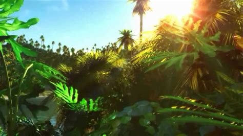 Animated Jungle Wallpaper - jungle animation