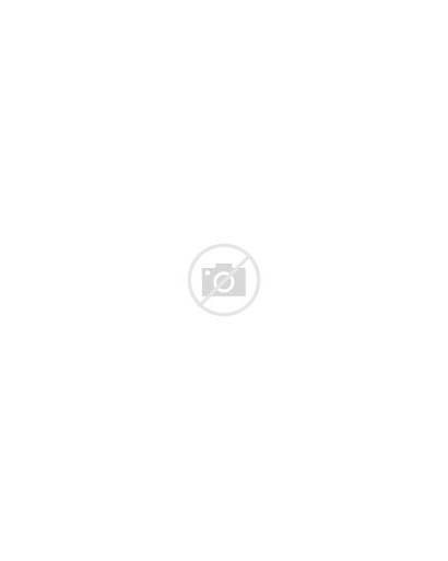 Coloring Patterns Modern Botanical