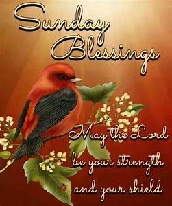 Sunday Blessings | Sunday blessings | Pinterest