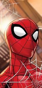 Spiderman, Animated, Hd, Wallpaper