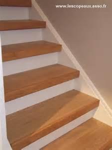 Comment Relooker Escalier Bois by 25 10 2014 Cedossier Vous Explique La M 233 Thode Utilis 233 E