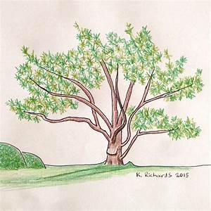 Tree Drawing | TickleHead