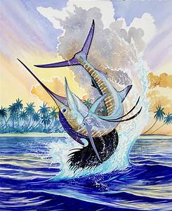 Sailfish Backgrounds Related Keywords & Suggestions ...
