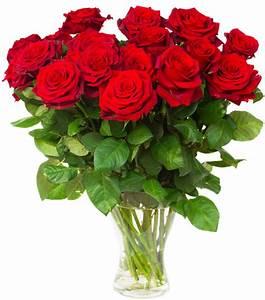 1 Rote Rose Bedeutung : rote rosen im bund bei ~ Whattoseeinmadrid.com Haus und Dekorationen