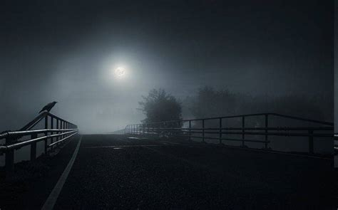 bridge dark moon crow birds mist road trees night