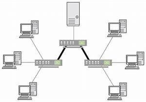 Computer Network Topologies  Ccna  Icnd1 100