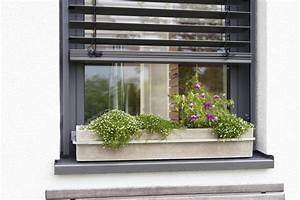 Blumenkästen Mit Bewässerung : blumenkastenhalterung f r fensterbank ohne bohren ~ Lizthompson.info Haus und Dekorationen