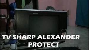 Servis Tv Sharp Alexander 21 U0026 39  U0026 39  Protect