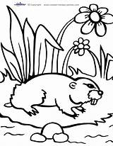 Groundhog Coloring Printable Coolest Printables sketch template
