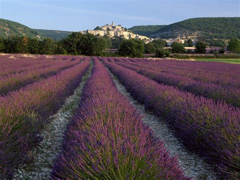 provence wallpapers wallpaper cave
