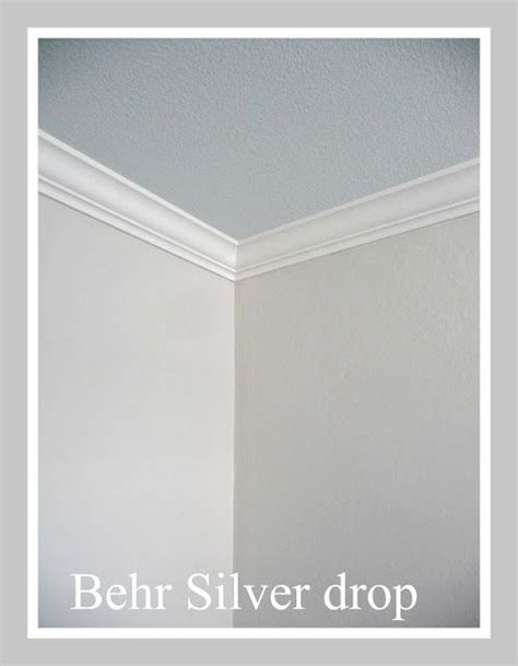 behr silver drop trim swiss coffe for the home