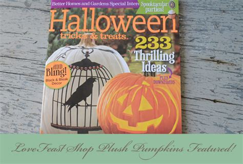Better Homes And Gardens Dated 1970 To 1973: Better Homes And Garden Tricks & Treats Magazine