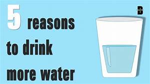 Why Water So Important In Our Body  Part-1