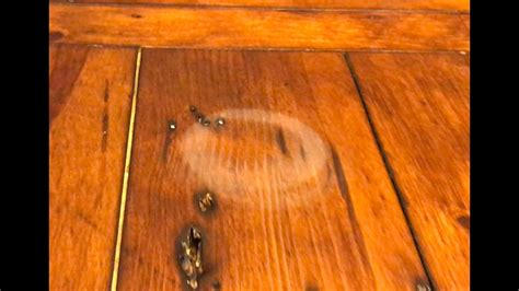works remove water stains  wood   hair