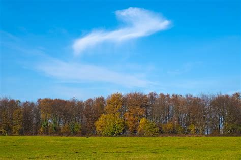 images landscape tree nature grass horizon mountain cloud sky field meadow