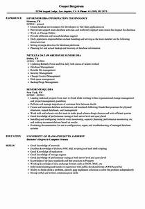 Dba senior resume samples velvet jobs for Dba resume sample