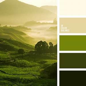 Farbpalette Wandfarbe Grün : 2245 farbkombinationen pinterest farben palette und farbpalette ~ Indierocktalk.com Haus und Dekorationen