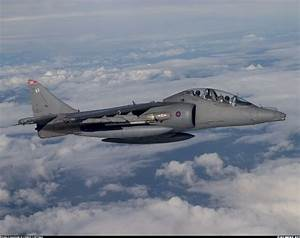 British Aerospace Harrier T10 aircraft picture | Planes ...