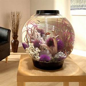 biOrb Black Mega Aquarium Kit with Light Petco