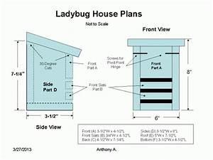 Ladybug House Plans Lady bug farming Pinterest